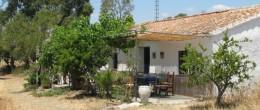 AX139 – Finca Dehesa & Vineyards