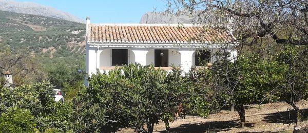 AX939 – Finca Fundidero large country house, Riogordo