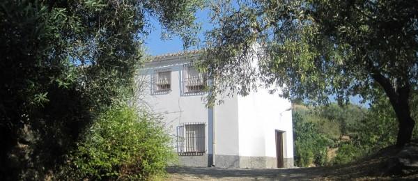 AX423 – Finca Fundidero large country house, Riogordo