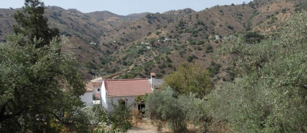 AX594 – Casa Isabelita, small cottage in the countryside, La Breña
