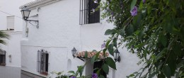 AX619 – Casa Patio de Flores – village house with patio garden, Benamocarra
