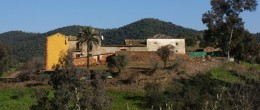 CO149 – El Molino, olive mill with business potential, Montoro (Cordoba)