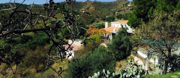 AX666 – Cortijo Pampo Obo – country cortijo near the sea