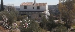 AX687 – Finca Los Arcos, Los Ventorros, Comares – country rental business and home