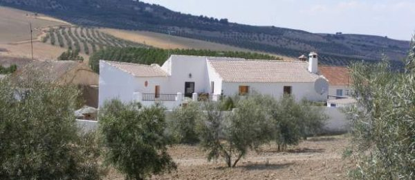 G152 – Village house for sale, near Alhama de Granada