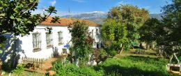 AX965 – Cortijo Los Bravo, country cortijo with unique kennels and training business opportunity – Benamocarra