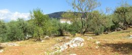 AX989 – Finca Fuente Hurtado, country house with land, Comares