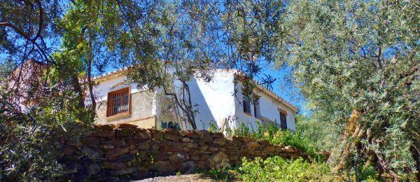 AX1063 – Casa El Cerro, Los Hijanos, Comares