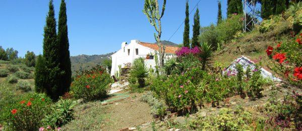 AX1081 – Finca La Molina, country house, Torrox