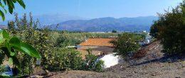 AX1106 – Finca Pilar Luchena, avocado farm and house to renovate, Benamocarra